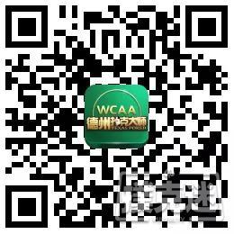 300人豪取三百万总决赛奖励!——绿色德扑大师夏季赛激情来袭!
